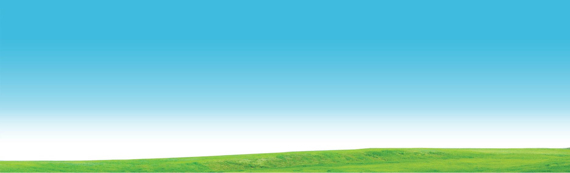 sky-grass-bg