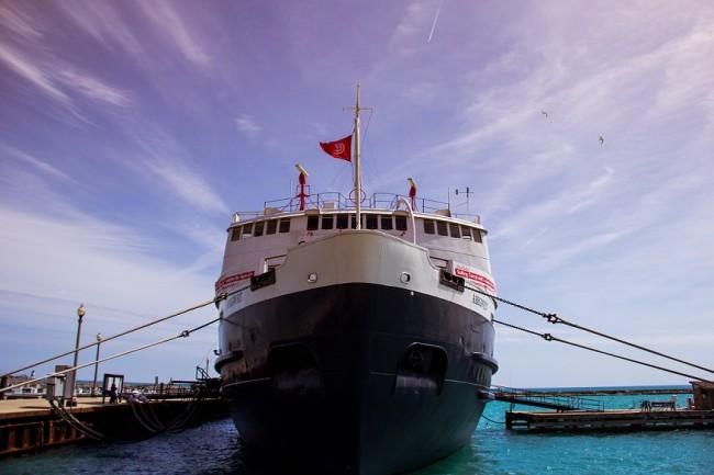 Cruise, Ship, Vacation, Indoor Air Quality, IAQ, HVAC, Air Handler Unit, Green Air Environmental