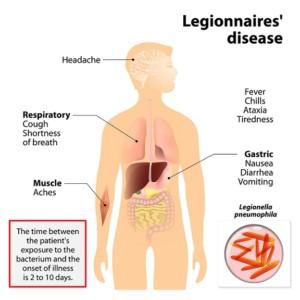 Legionella germs, Legionnaire's disease, bacteria, LBD, Indoor Air Quality, Prognostic chart