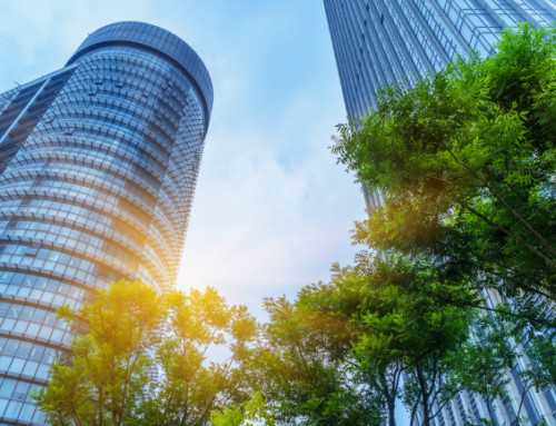 6 Ways Your Office Can Go Green